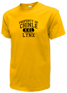 Chinle Elementary School  T-Shirts