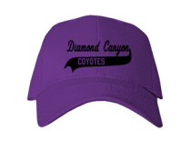 Diamond Canyon Elementary School  Baseball Caps