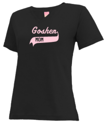 Goshen Elementary School  V-neck Shirts