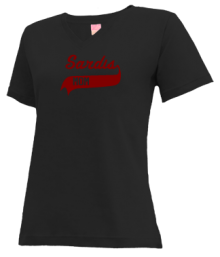 Sardis Elementary School  V-neck Shirts