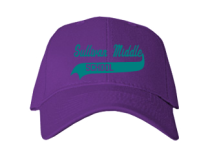 Sullivan Middle School  Baseball Caps