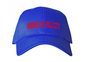 Burns Flat-dill City High School Kid Embroidered Baseball Caps