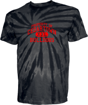 Cedartown Middle School Kid Tie-dye T-Shirts