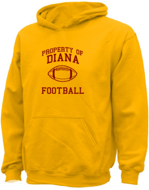 Diana Elementary School Kid Hooded Sweatshirts