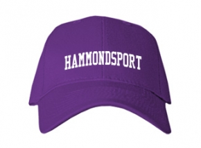Hammondsport High School Kid Embroidered Baseball Caps