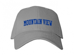Mountain View Elementary School Kid Embroidered Baseball Caps