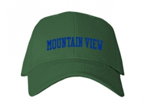 Mountain View Middle School Kid Embroidered Baseball Caps