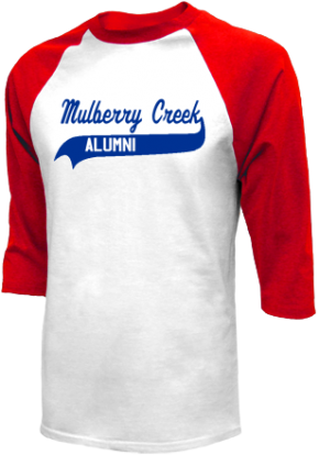 Mulberry Creek Elementary School Raglan Shirts