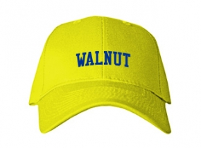Walnut Elementary School Kid Embroidered Baseball Caps