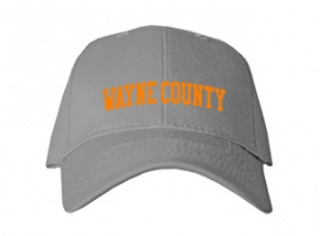 Wayne County High School Kid Embroidered Baseball Caps
