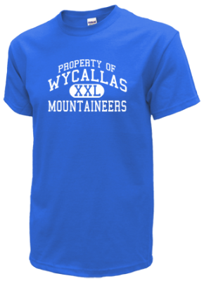 Wycallas Elementary School Kid T-Shirts